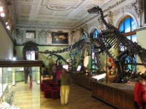 Wien_Naturhistorisches_Museum_Dinosaurierabteilung